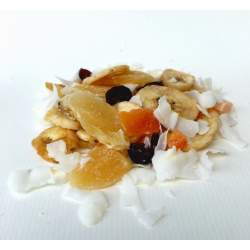 Sušené ovoce přírodní 500g